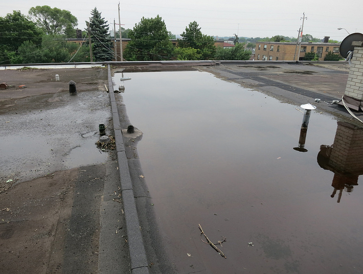 Toronto-Roofing-Dirty-Drain-Pooling-Flat-Roof