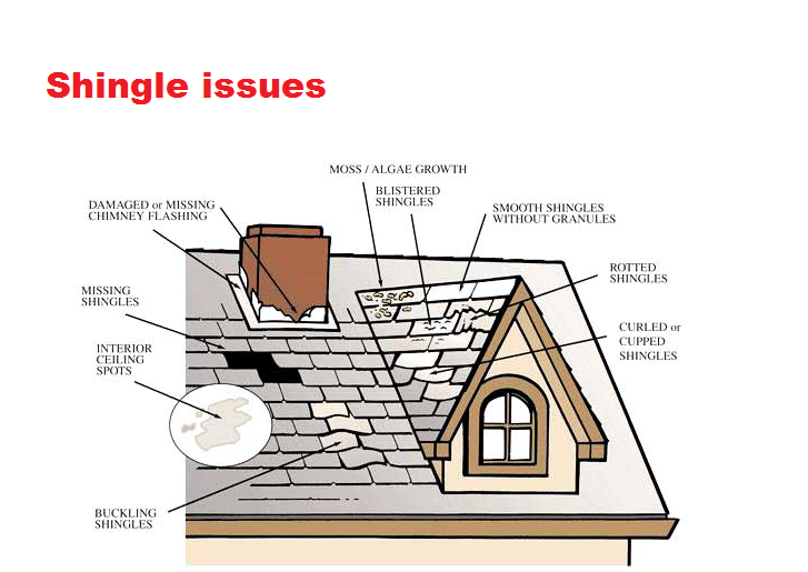 Spring Roof Inspection Advice